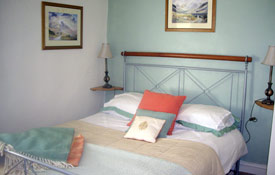north wales holiday rental - dogs welcome